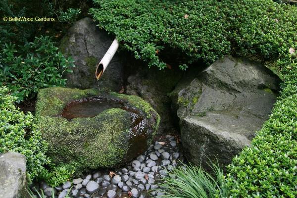 Bellewood gardens diary - Japanese garden water basin ...