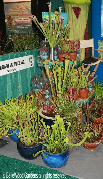 And Aquascapes Unlimited Has A Hybridizing Program, Propagating And Selling  These Unique Plants. But Thatu0027s Not All. The Nursery Also Provides