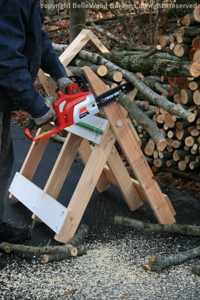 how to cut branches with a chain saw