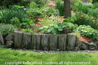 Bellewood gardens diary for Log garden edging